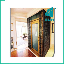 Luxury Home Lift with Competitive Price