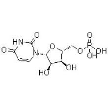 5'-Уридиловая кислота