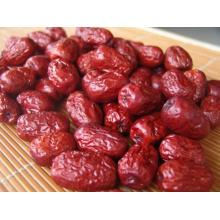 Jujube Dattes Rouges Chinoises Pharmaceutiques