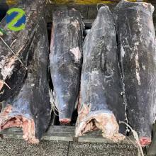 Deep frozen Black Marlin, Sugiyama , Sail fish