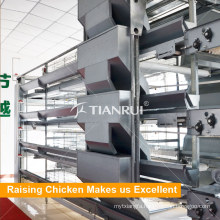 Chicken Poultry Equipment A Frame Battery Layer Chicken Cage