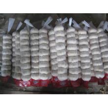 Pequeno saco de malha de embalagem de alho branco puro