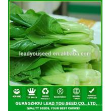 NPK09 Jieqi China pak choi industria de semillas