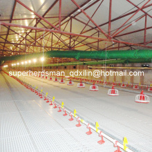 Complete Set High Quality Automatic Poultry Equipment for Broiler Production