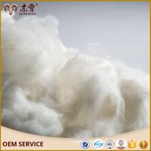 Fibre de cachemire crue mongole intérieure fibre de chèvre chinoise et fibre de cachemire