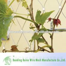 Green Plant Klettern Durable Edelstahl Mesh Netting