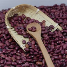 Nieuw gewas 2017 Small Red Kidney Beans