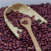 New crops 2017 Small Red Kidney Beans China of origin