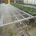 Aluminum frame with hot galvanized greenhouse rolling bench