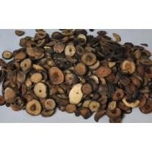 Natürliches Citrus Aurantium Extrakt Pulver