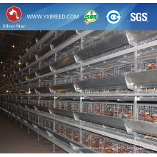 Hot Galvanized Layer Battery Cage to Kenya Big Farm