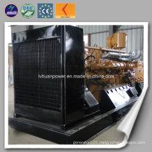 Commercial Power Supply 10kw-1000kw Water Cooling LPG Cummins Generator LPG Generator
