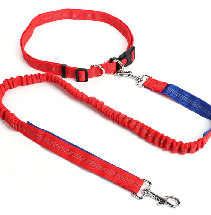 Dog Bungee Leash