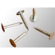 Гальванизированные гвозди высокого качества с головкой зонтика