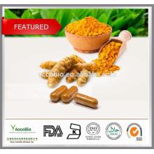 Polvo de cúrcuma orgánico en polvo natural de la planta / extracto