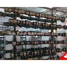 Diesel Engine Spare Parts Cummins 4BTA3.9c Crankshaft 3908031