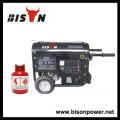 BISON (CHINA) 2KW Gerador Padrão de Metano de Gás a Gás