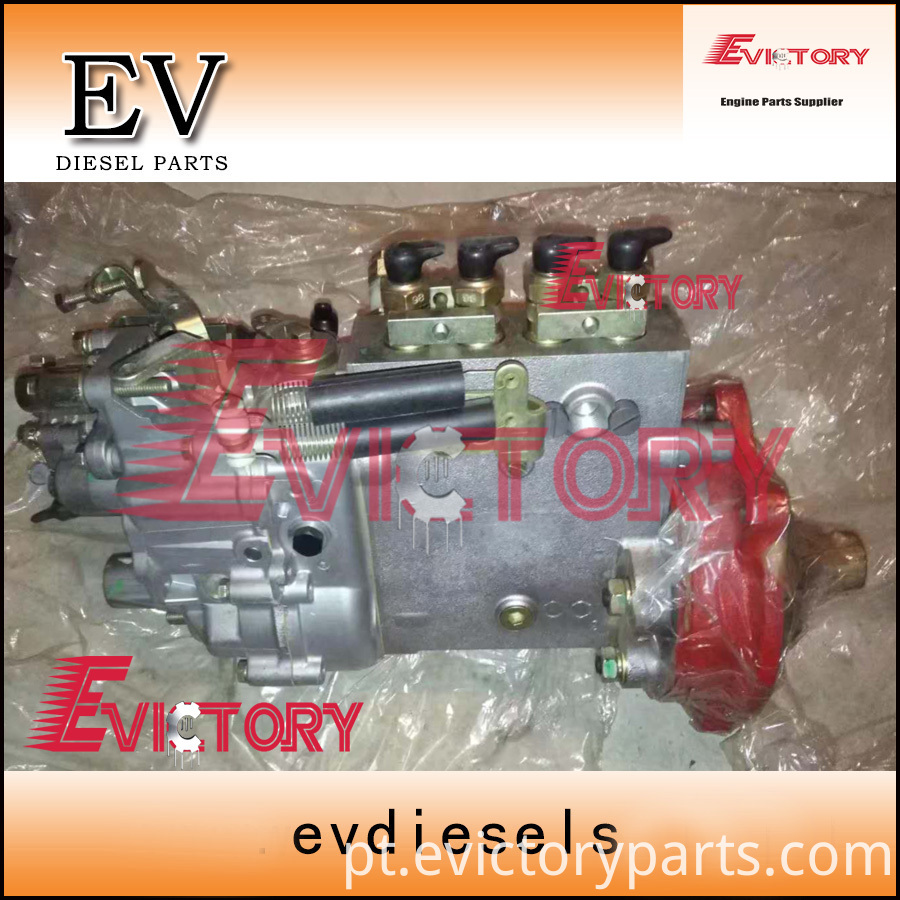 W04CT fuel pump-1