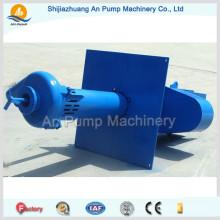 Китай Gold Mining Высокая производительность Sp (R) Вертикальный шламовый шламовый насос