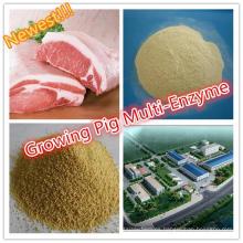 Mejor Enzima Multi Especializada de Cerdo Creciente de Grado de Alimentación de Termoestabilidad durante el Proceso de Peletización