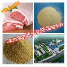 Better Thermolstability Feed Grade Growing Pig Specialized Multi Enzyme during Pelleting Process