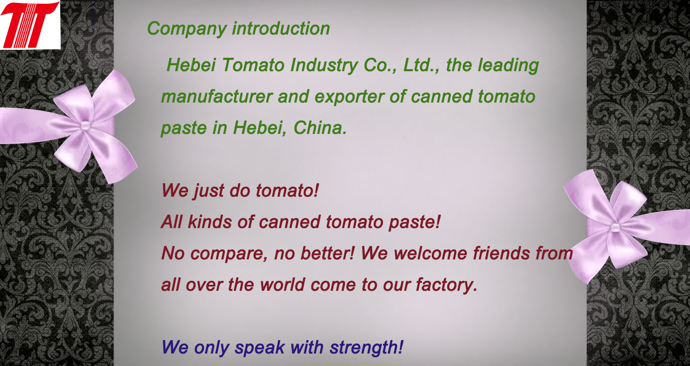 company introduction