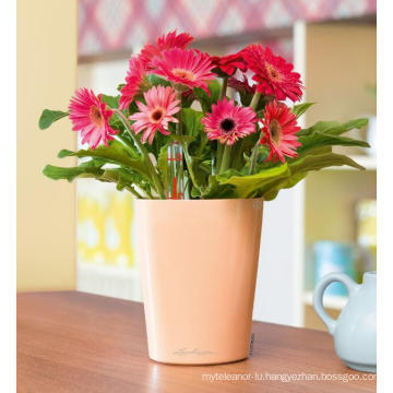 (BC-F1046) Fashionable Design Plastic Self-Watering Mini Flower Pot