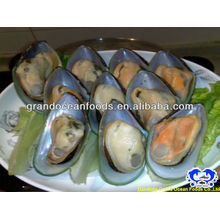 IQF mussel meat with shell