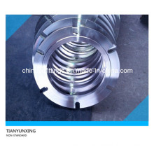 Non-Standard Special Forged Stainless Steel Flanges