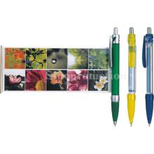 Caneta de banner / plástico promocional esfolar caneta bola (GP2352)
