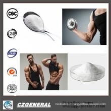 Acétate sain CAS1045-69-8 de testostérone de Steriods de poudre blanche de croissance de muscle