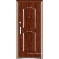Security Front Door (WX-S-142)