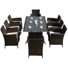 Rattan Furniture for Indoor / Outdoor with 8 Seater / SGS (4006-1)