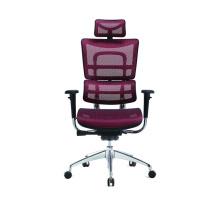High-back Ergonomic Executive Office Chair