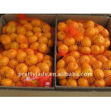 Mandarina fresca del bebé