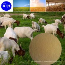 Protéines d'acides aminés alimentaires riches en protéines
