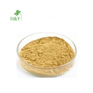 Free Shipping Loose Weight Cucumis Sativus Fresh Cucumber Extract Powder 20:1 In Bulk