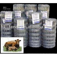 Clôture de champ enduit de PVC