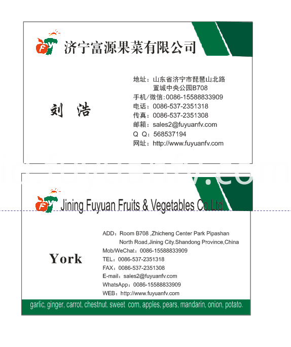 York Business Card