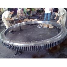 Vento energia engrenagem/grande engrenagem de anel/anel (E-5601)