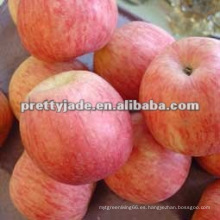 Buena calidad manzana roja