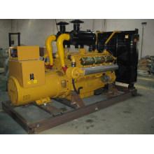 300KW Diesel Stromerzeuger