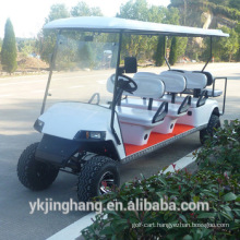 8passenger gasoline sightseeing car/golf cart with two back towards seats