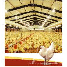 Птицефабрика / Стальная конструкция сарая для птичника (PCH-12)