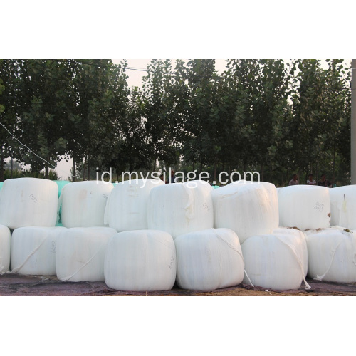 Dijual Hot Silage Bungkus Film Lebar500mm