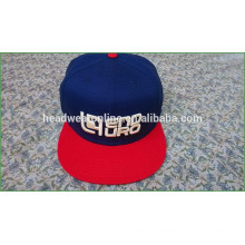 custom 3D embroidery snapback hats /fashion snapback hats