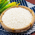 Wholesale Agriculture Products Glutinous rice Whole grains