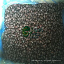 High Quality Frozen IQF Wild Blackcurrant