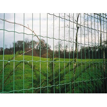 Holanda mallas malla/Holanda Euro cerca alambre de cerca