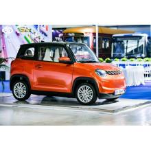 billiges Hochgeschwindigkeits-Elektro-Mini-Auto eec coc